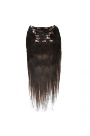 50cm 8pcs REMY HUMAN HAIR CLIP IN EXTENSION #02, 100g