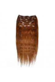 50cm 10pcs REMY HUMAN HAIR CLIP IN EXTENSION #06, 160g