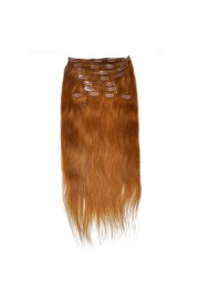 50cm 10pcs REMY HUMAN HAIR CLIP IN EXTENSION #08, 160g