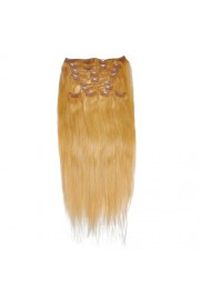 50cm 10pcs REMY HUMAN HAIR CLIP IN EXTENSION #16, 160g