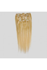 50cm 8pcs REMY HUMAN HAIR CLIP IN EXTENSION #27/613, 100g
