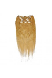 50cm 8pcs REMY HUMAN HAIR CLIP IN EXTENSION #27, 100g