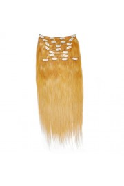 50cm 10pcs REMY HUMAN HAIR CLIP IN EXTENSION #27, 160g